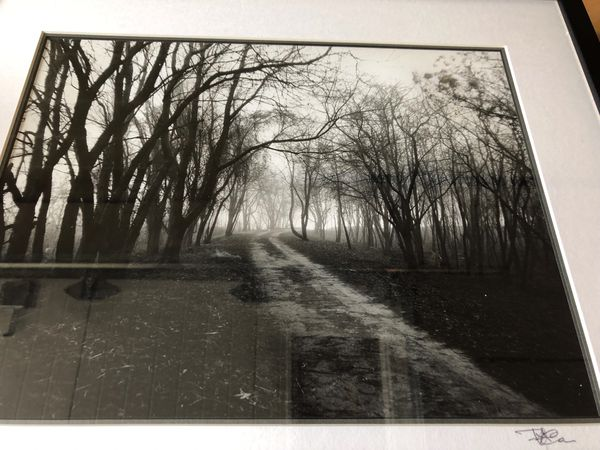 Black/White Photograph of Rock Creek Park in DC