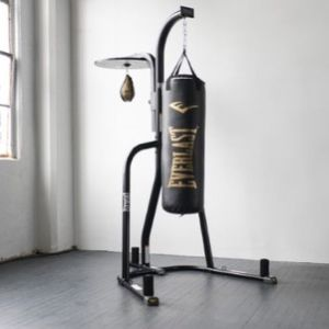 80 Pound Everlast Punching Bag Stand And Speed Bag for Sale in Marysville, WA
