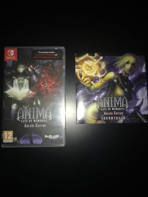 Nintendo Switch Game: Anima: Gate of Memories: Arcane Edition for Sale in Providence, RI