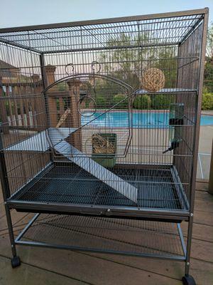 Chinchilla/ guinea pig plus a lot of accessories! for Sale in Ashburn, VA