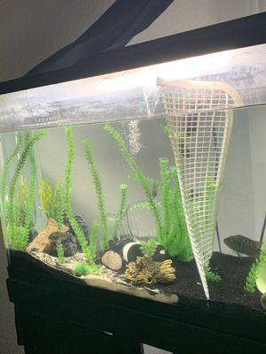 65 gallon fish tank for Sale in Fresno, CA
