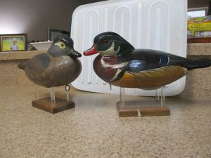 PAIR = WOOD DUCKS for Sale in Denver, CO