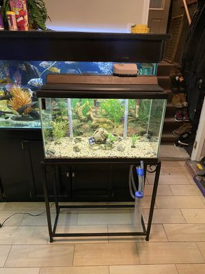 29gl Fish Tank With Stand & Accessories for Sale in Burbank, IL