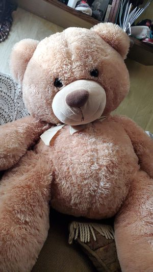 Teddy bear for sale for Sale in Ontario, CA