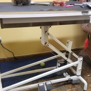 Grooming table ( Electric) for Sale in Los Angeles, CA
