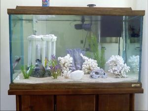 58 gal fish tank with everything you need NO FISH for Sale in Tampa, FL