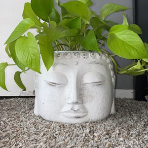 Buddha Head Planter Pot for Sale in South Gate, CA