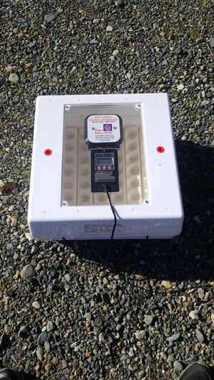 Egg incubator for Sale in Lacey, WA