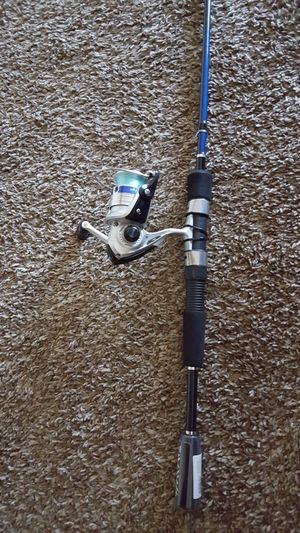 Daiwa spinning combo fishing pole for Sale in Norman, OK