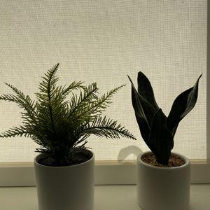 Fake Mini Plants for Sale in Washington, DC