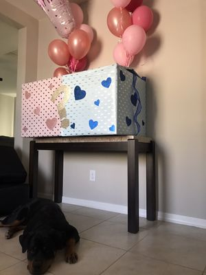 Gender Reveal Box for Sale in Avondale, AZ