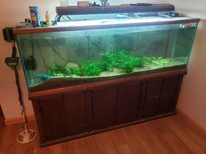 135 gallon aquarium for Sale in Evansville, IN