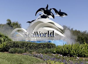 Seaworld tickets for Sale in Kissimmee, FL