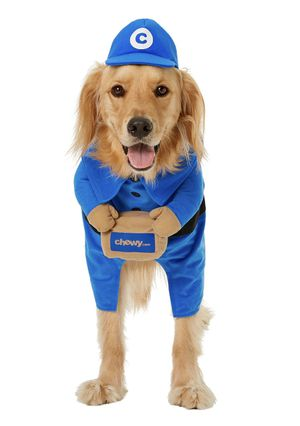 Delivery Courier Halloween Dog Costume (XXL) for Sale in Long Beach, CA