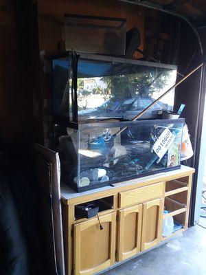 Aquarium for Sale in Portland, OR
