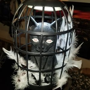 Demon cat in bird cage lamp with remote control for Sale in Las Vegas, NV