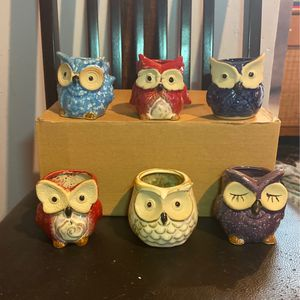 Glazed Owl Pots for Sale in Pompano Beach, FL