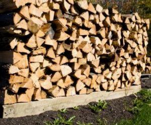 Oak fire wood for Sale in Hudson, FL
