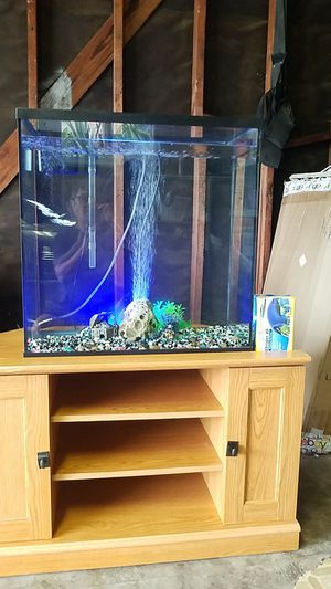 32 gallons A taller vertical beautiful fish tank come with stand In excellent condition comewith filter, brand new 40 gallon air pump ,decoration. for Sale in Long Beach, CA