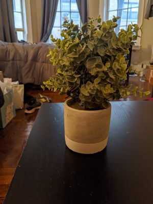 Fake plant for Sale in New York, NY