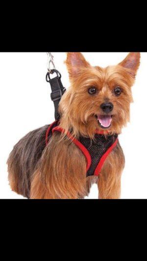 Pet harness for Sale in Monrovia, CA