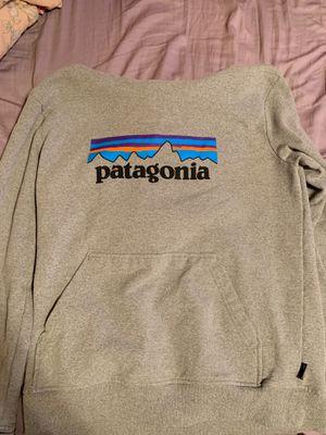 Patagonia Hoodie for Sale in Lithopolis, OH