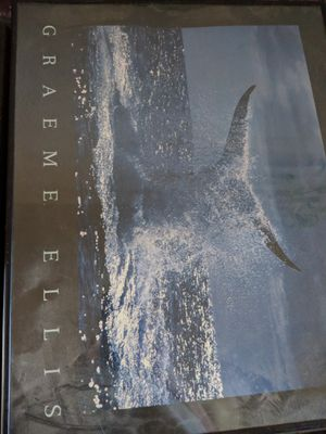 Graeme Ellis whale picture framed for Sale in White City, OR