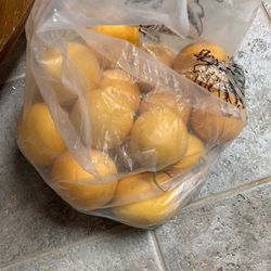 Free Grapefruit for Sale in Fresno,  CA
