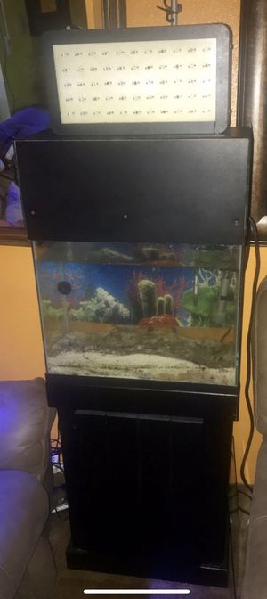 15 GALLON TALL FISH TANK COMPLETE SETUP for Sale in Lake Forest Park, WA