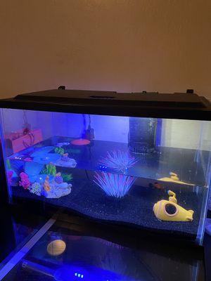 Fish tank (10 gallon) for Sale in Avondale, AZ