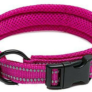 TRUE LOVE Dog Collar Reflective Premium Duraflex Buckle Size Xs for Sale in Houston, TX