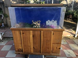 60 fish tank for Sale in Inglewood, CA