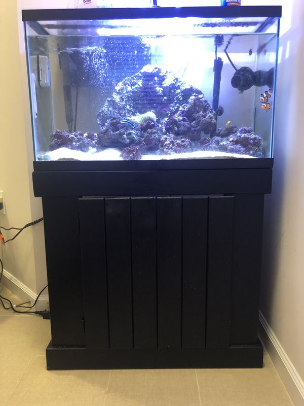 29G Fish Tank w/ Black Wood Stand and Storage Space