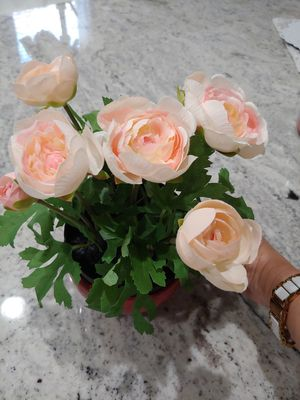 Artificial Flowers & Ceramic Mug Pot for Sale in Las Vegas, NV