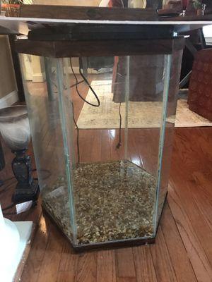 30 gallon fish tank for Sale in Dover, DE
