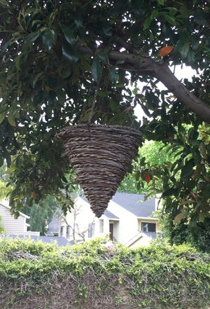 Twine Cone shaped hanging plant holders for Sale in Fremont, CA