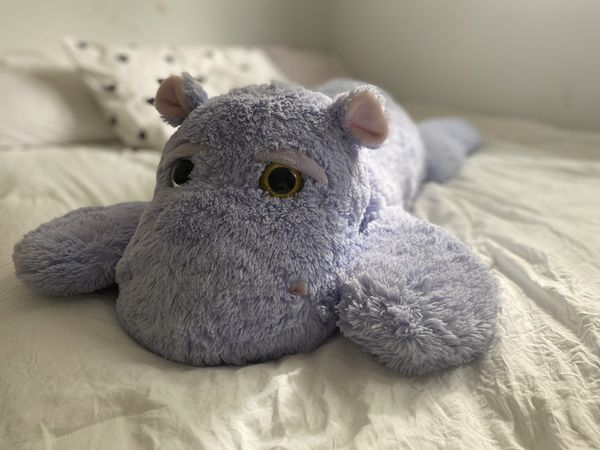 Giant Hippopotamus Stuffed Animal 🦛