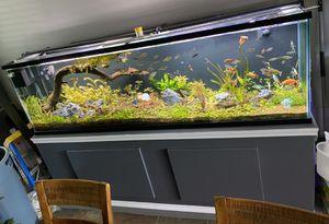 160 Gallon Aquarium/Fish Tank for Sale in Oceanside, CA