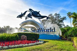 Seaworld Florida tickets for Sale in Orlando, FL