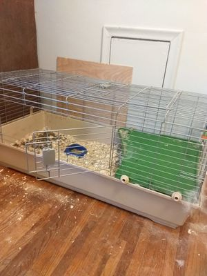 Bunnies and cages for Sale in Fort Wayne, IN