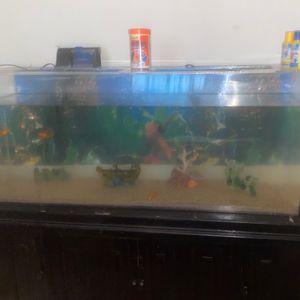 Fish tank for Sale in Lathrop, CA