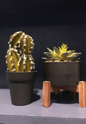 Small (fake) cactus and plant for Sale in Golden, CO