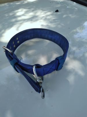 Large dog collar for Sale in Fresno, CA