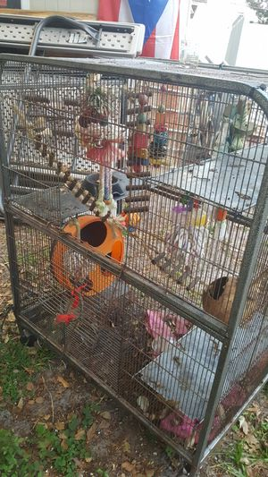 Bird pet cage toys for Sale in Orlando, FL