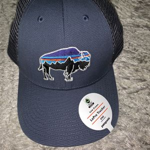New Patagonia Low Crown Blue Bison Baseball Hat Cap for Sale in Chicago, IL