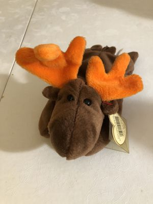 Chocolate the moose beanie baby. for Sale in Clifton, NJ
