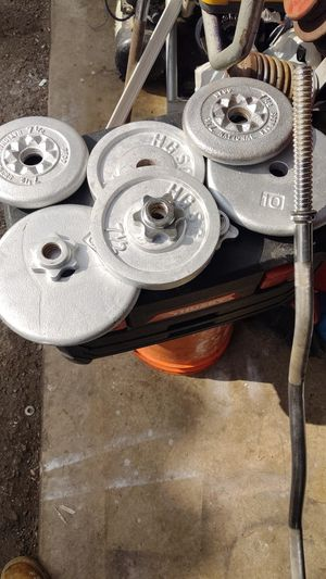 Standard curl bar and 50 pounds for Sale in Anaheim, CA