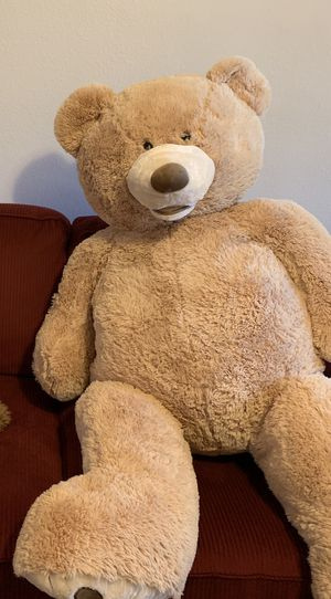 Teddy Bear for Sale in Franklin, TN