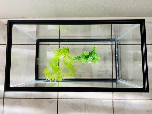 Brand New 10 gallon fish tank