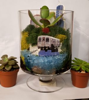 Chicago IL themed terrarium for Sale in Detroit, MI